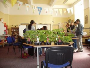 Hanging basket workshop 1 2014